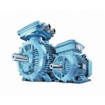 IE2 Cast Iron Motors 3GBP289221-ADG