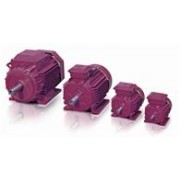 IE2 Cast Iron Motors 3GBP258214-BDG