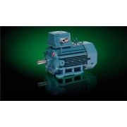 IE2 Cast Iron Motors 3GJP318221-BDG